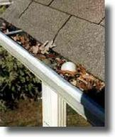 Dirty gutters need to be cleaned by professional gutter service experts!  falls church VA, arlington VA, Alexandria VA, fairfax VA, burke VA, Herndon VA, Sterling VA, Oakton VA, Reston VA, Vienna VA, McLean VA, Great Falls VA, Fairfax Station VA, Springfield VA, Manassas, Bistow VA, Lorton, Woodbridge, Dale City