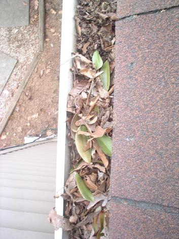 Clogged, Leaky, Damaged Gutters?  GUTTER DOCTOR Can HELP! 703-403-4714